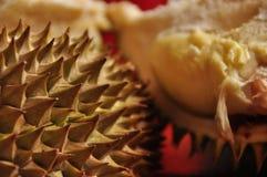 Durian i spetsigt skal java Royaltyfri Foto
