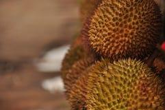 Durian i spetsigt skal java Arkivfoto