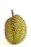 Durian, il re di frutta fotografia stock libera da diritti