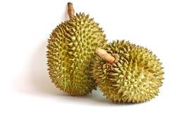 Durian, il re di frutta fotografie stock libere da diritti