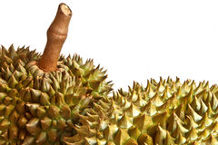 Durian, il re di frutta immagini stock libere da diritti