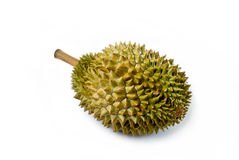 Durian, Isolated Stock Photography