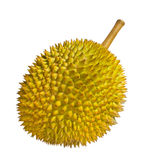 Durian isolated Stock Photo