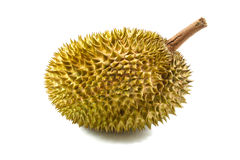 Durian isolated on white Stock Photos