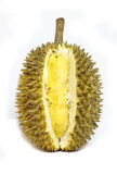 Durian isolated Royalty Free Stock Photos