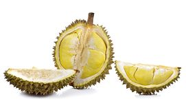 Durian isolated on white background. Stock Image