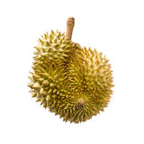 Durian isolated on white background Royalty Free Stock Image