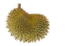Durian isolato Immagine Stock Libera da Diritti