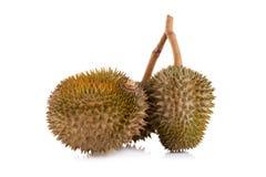 Durian isolato su priorità bassa bianca fotografie stock libere da diritti