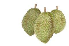Durian isolato sullo spazio bianco della copia Fotografia Stock Libera da Diritti