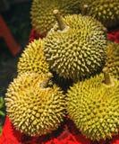 Durian jest sławnym cukierki typowymi od smakowitym Azjatyckim owoc i Singapur Malezja i Indonezja z ciekawymi kolcami, żądła lub obraz royalty free
