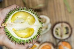 Durian kerantungan. tropical fruit endemic to Borneo royalty free stock photos
