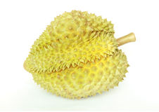 Durian , king of fruit Stock Images