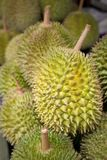 Durian - king of fruit Royalty Free Stock Photography