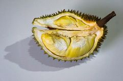Durian, the King of fruit stock photography