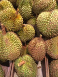 Durian, Royalty Free Stock Photography