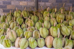 Durian, king of fruit Stock Photos