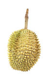 Durian, king of fruit Royalty Free Stock Photography