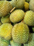 Durian, King of Fruit Royalty Free Stock Image