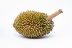 Durian king of fruit. S  the most famous fruit of thailand Stock Images