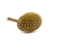 Durian king of fruit. S  the most famous fruit of thailand Royalty Free Stock Images