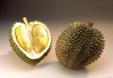 Durian, King fruit of Malaysia Royalty Free Stock Photography