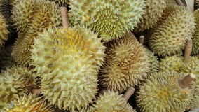 Durian is king of fruit. Durian in market,  Thailand Royalty Free Stock Photo