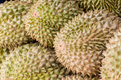 Durian, King of Fruit, for selling in Thailand Royalty Free Stock Photography