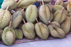Durian king of fruit Royalty Free Stock Images