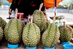 Durian King of Fruit From Thailand. Durian is a popular Thai export fruit in Asia because it is delicious and expensive and not en. Ough for eat. Durian Tropical royalty free stock photography