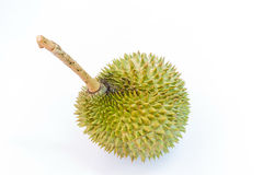 Durian Royalty Free Stock Images