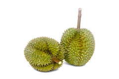 Durian The King Of Fruit On White Backgroung. Durian The King Of Fruit white green spike On White Backgroung Royalty Free Stock Images