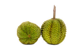 Durian The King Of Fruit On White Backgroung. Durian The King Of Fruit white green spike On White Backgroung Stock Image