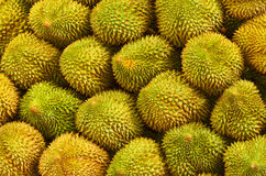 Durian, king of fruit Royalty Free Stock Images