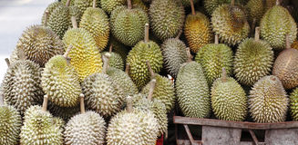 Durian King of fruits Royalty Free Stock Photos