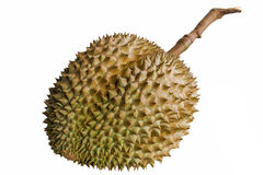 Durian the king of fruits. Stock Images