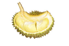 Durian , King of Fruits isolated / Durian , King of Fruits on white background / Durian , King of Fruits With Clipping path. Royalty Free Stock Photography