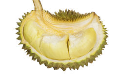 Durian , King of Fruits isolated / Durian , King of Fruits on white background / Durian , King of Fruits With Clipping path. Royalty Free Stock Photo