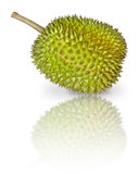 Durian, King of Fruits. Durian, pronouns as King of Fruits, isolated on white background Royalty Free Stock Photography