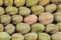 Durian. Royalty Free Stock Photography