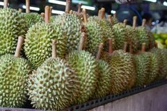 Durian, king of fruits from Thailand stock image