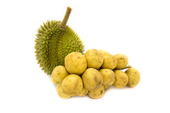 Durian King of fruits and Wollongong delicious fruit or Longkong fruit or Lansium parasiticum Royalty Free Stock Photo