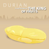 Durian the king of Thai fruits Royalty Free Stock Images
