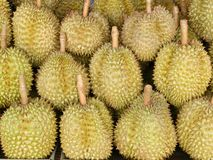 Durian king of Thai fruits. Royalty Free Stock Photos