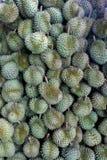 Durian, konung av tropiska frukter i Thailand och South East Asia arkivbilder