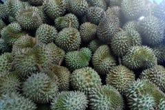 Durian, konung av tropiska frukter i Thailand och South East Asia arkivfoton