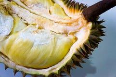 Durian konungen av frukt royaltyfria foton