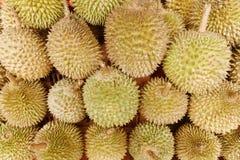 Durian królewiątko zdjęcie stock