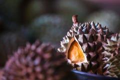 Durian - królewiątko Tropikalne owoc Fotografia Stock
