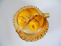 Durian Kulu Royalty Free Stock Photography